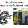 Skrytá kamera: Anakonda v převlékací kabince