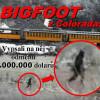 ŠTVANICE NA BIGFOOTA! 274 cm vysokého obra vyfotili u vlaku v Coloradu