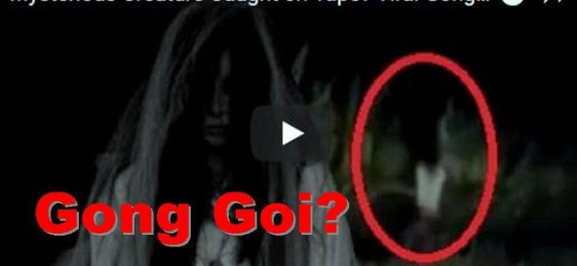 GONG GOI – v Thajsku natočili mýtické jednonohé dítě