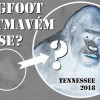 Tennessee: BIGFOOT V TMAVÉM LESE? (video uvnitř)