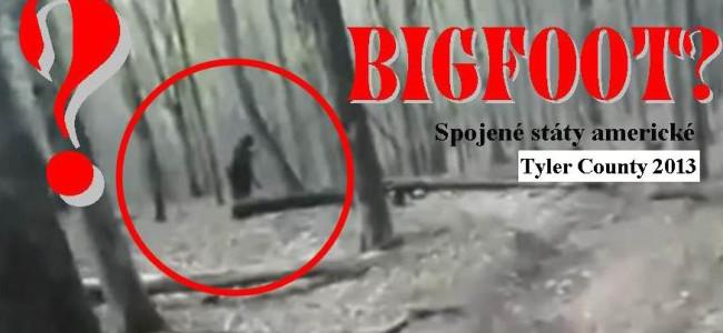 NEHYBNÝ ČERNÝ BIGFOOT: natočili ho v lese v Západní Virginii