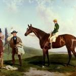 Zajímavosti o koních