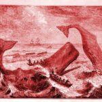 Potápěči se podívali do do největší ozubené tlamy na světě