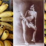 Zajímavosti o banánech