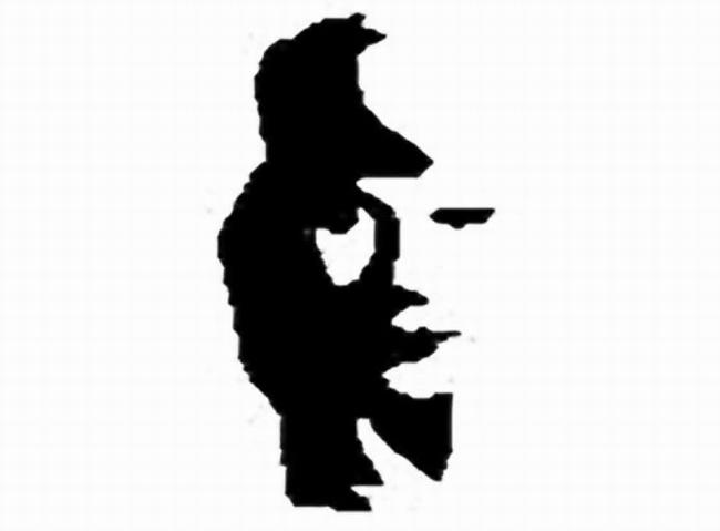 Opticky Klam Dama Nebo Muzikant Zahady Info