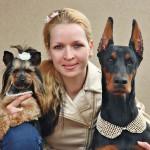 Hlavolam: Výstava psů