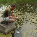 Zkuste změřit, jak je průhledný váš rybník…