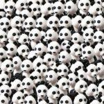 Všude samá panda, ale KDE JE PES? Najdete ho do 30ti vteřin?