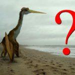 V Alabamě spatřili obřího rudého letce. Viděli živého pterosaura?