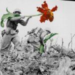 Mr. Blick: Místo zbraní dokresluje květiny
