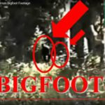 BIGFOOT S CHLUPATÝM DÍTĚTEM přešel cestu v Blue Mountains ve Washingtonu