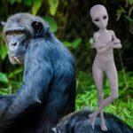 Libor Čermák: Vznikl člověk skřížením lidoopů a mimozemšťanů?