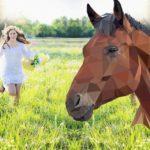 PIPLA OSMAHLÁ, ČIČORKA, UŽANKA… Koně pomohli v Milovicích květinám