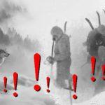 Lukáš Ardon: SMRT ČLENŮ DJATLOVOVY VÝPRAVY MAJÍ NA SVĚDOMÍ… VLCI