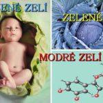Chemie v kuchyni – je libo modré nebo červené zelí?