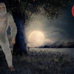 BÁZLIVÝ BÍLÝ OBR PODOBNÝ ČLOVĚKU: viděli ho v Michiganu
