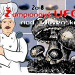 2018: ŽAMPIONOVÉ UFO – vyfotili ho nad Slovenskem